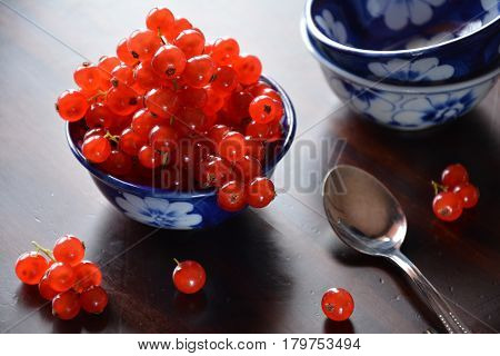 Against the light view of redcurrant berries in a ceramics bowl