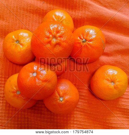 Oranges on an orange background