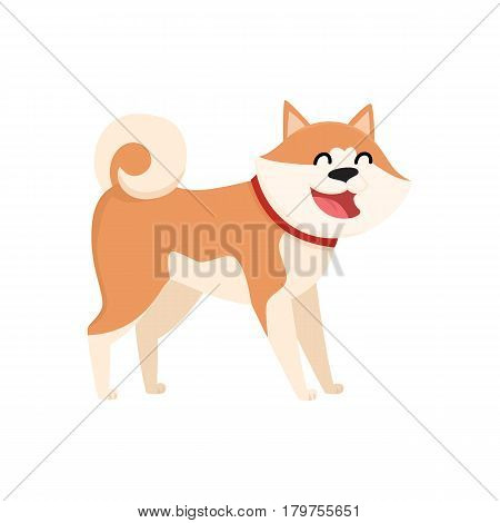 Cute smiling Akita Inu dog character, cartoon vector illustration isolated on white background. Nice and friendly purebred Japanese Akita dog character, colorful cartoon illustration