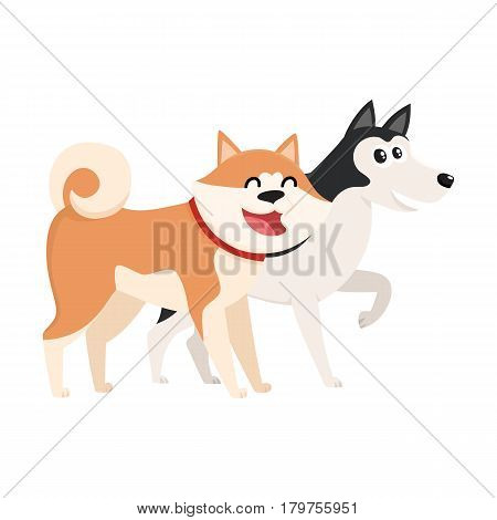 Couple of cute, funny dog characters - brown Japanese akita inu, black and white husky, cartoon vector illustration isolated on white background. Lovely husky and akita inu characters, dog breeds