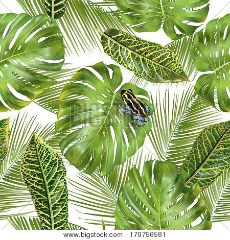 Vector tropical seamless pattern with monstera leaves and little frog. Exotic design for cosmetics, spa, health care products. Can be used as summer background. Best for fabric in hawaiian style