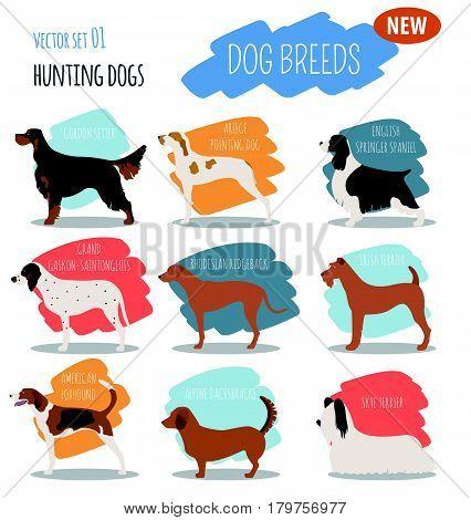 Dog Breeds_6