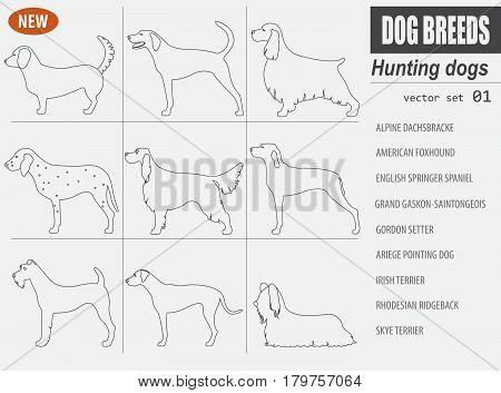 Dog Breeds_5