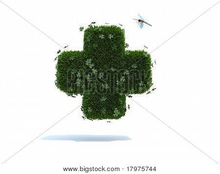 green heart grass clovers