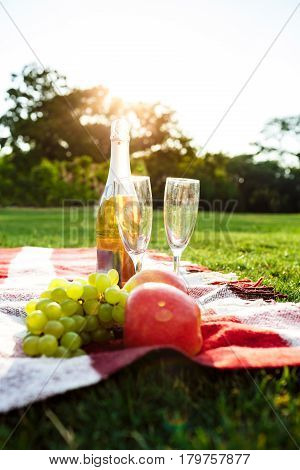Photo of fruit, champagne and stemwares on red plaid in park.