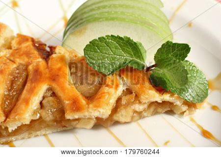 Viennese Apple strudel with vanilla ice cream and mint on a plate.