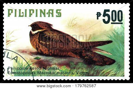 STAVROPOL RUSSIA - March 17 2017: A stamp printed by Philippines shows bird Great eared Nightjar Philippine animals circa 1979.