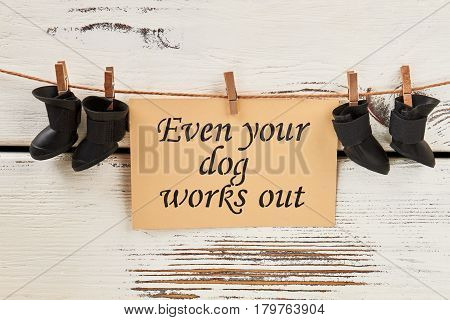 Shoes for dog on clothesline. Long-term lifestyle change.