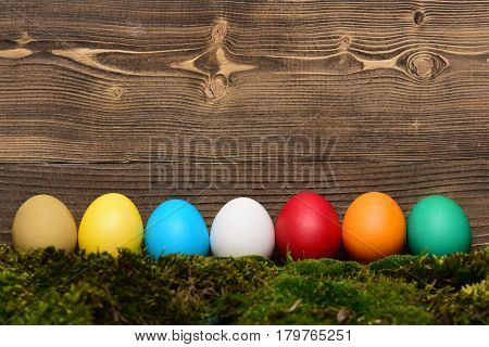 Painted Easter Colorful Eggs With Green Moss On Wooden Background