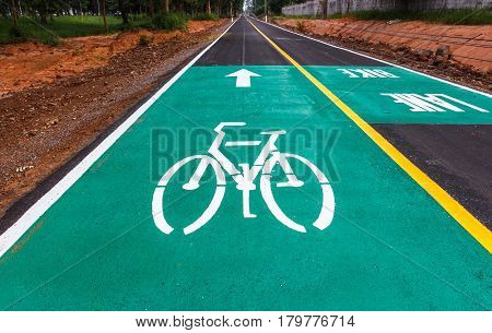 The Dedicated bicycle lanes designed to make cycling safer.