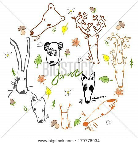 Cute vector set of forest animals made in cartoon style. Hand drawn bear raccoon fox rabbit deer wolf squirrel panda and elk. Each animal isolated and easy to use.