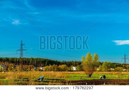 Panorama of typical Ukrainian rural landscape in spring. Agricultural fields and the town on the horizon in Irpin, Ukraine. Farmers working on farm land.