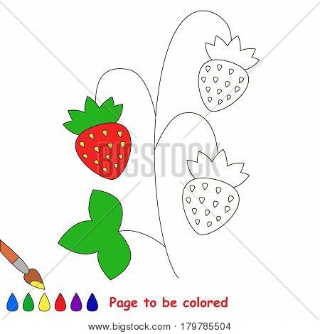 Small Red wild Strawberry, the coloring book to educate preschool kids with easy gaming level, the kid educational game to color the colorless half by sample.