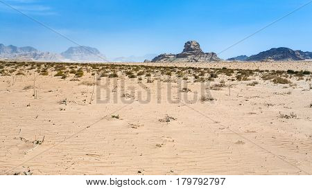 View Of Sphinx Rock In Wadi Rum Desert