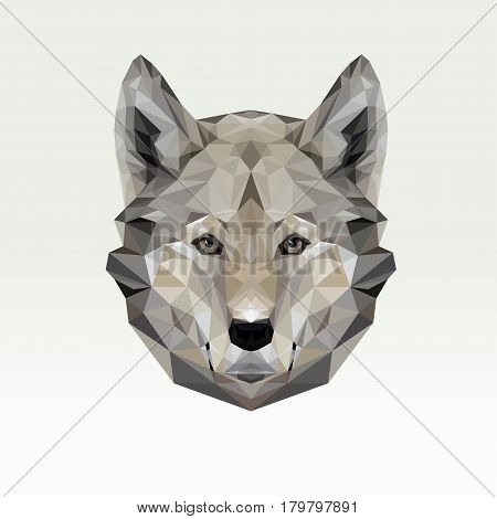 Vector portrait of wolf polygonal. Triangle dog illustration for use as a print on t-shirt and poster. Dog geometric low poly design. Wild dangerous animal. Wolf face.