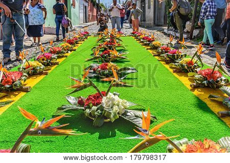 Antigua, Guatemala - March 26 2017: Man sprays water on dyed sawdust procession carpet during Lent in colonial town with most famous Holy Week celebrations in Latin America.