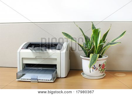 Printer On Desk With An Aloe Bonsai