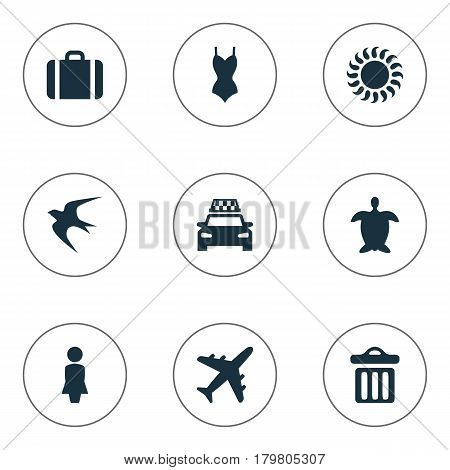 Vector Illustration Set Of Simple Seaside Icons. Elements Airplane, Swallow, Tortoise And Other Synonyms Seagull, Turtle And Sunshine.