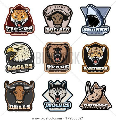 Colorful wild animals labels set with mammals shark and eagle heads in vintage style isolated vector illustration