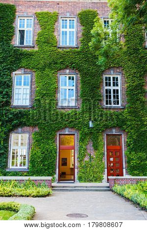 View of red brick building covered with ivy in Wawel Castle. Krakow. Poland.
