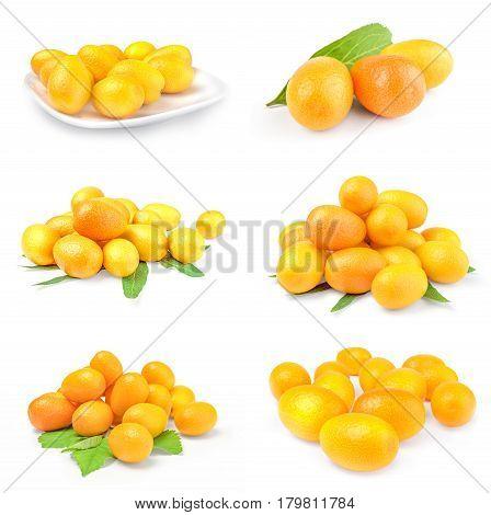 Set of kumquats on a isolated white background