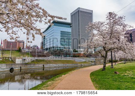 RichmondVirginia morning city skyline along the James River near Brown's Island and Tredegar St during cherry blossoms.