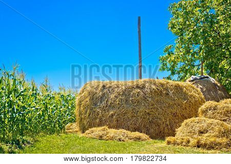 Hay Stack And Corn Field Summer View