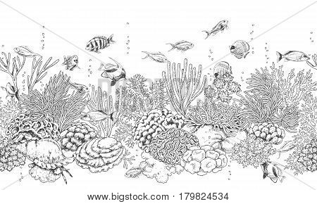 Hand drawn underwater natural elements. Seamless line horizontal pattern with reef corals actinia clams and swimming fishes. Monochrome sea bottom texture. Black and white illustration.