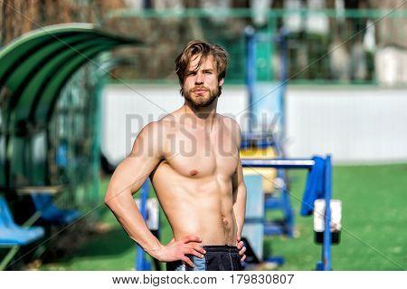 Bearded Man Has Stylish Hair, Athletic Body Relax At Stadium
