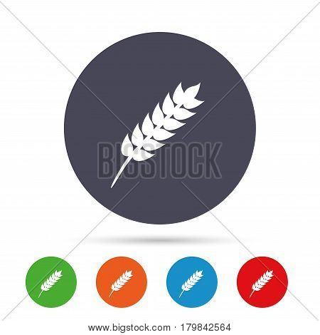 Gluten free sign icon. No gluten symbol. Round colourful buttons with flat icons. Vector
