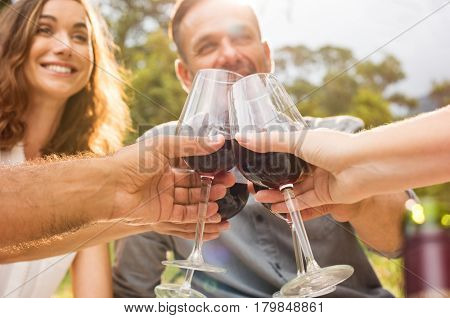 Mature friends raising their glasses in a toast during picnic. Happy middle aged couples celebrate. Happy man and smiling woman toasting with wine glasses anf have fun together.