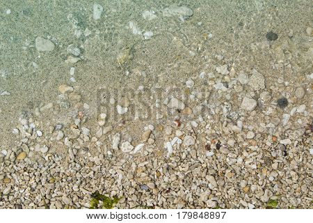 Seaside beach with yellow sand and white corals and shells. White sand beach with blue sea water. Summer travel banner template. Seashore corals and shells toned photo. Tropical beach under sunlight