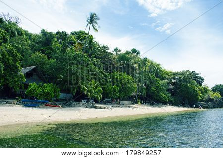 Tropical beach with green trees and white sand. Exotic island paradise toned photo. White beach under sunlight. Warm seashore with greenery. Coco palm tree silhouette. Ecotourism resort with seaview