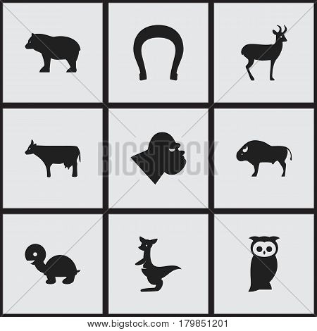Set Of 9 Editable Animal Icons. Includes Symbols Such As Owl, Kine, Reindeer And More. Can Be Used For Web, Mobile, UI And Infographic Design.