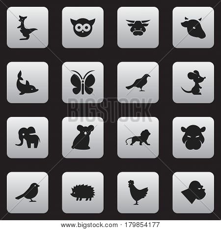 Set Of 16 Editable Zoology Icons. Includes Symbols Such As Kangaroo, Chimpanzee, Porcupine And More. Can Be Used For Web, Mobile, UI And Infographic Design.