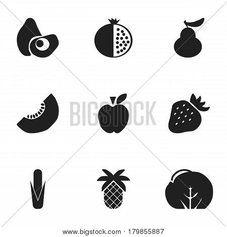 Set Of 9 Editable Fruits Icons. Includes Symbols Such As Papaya, Melon Slice, Maize And More. Can Be Used For Web, Mobile, UI And Infographic Design.