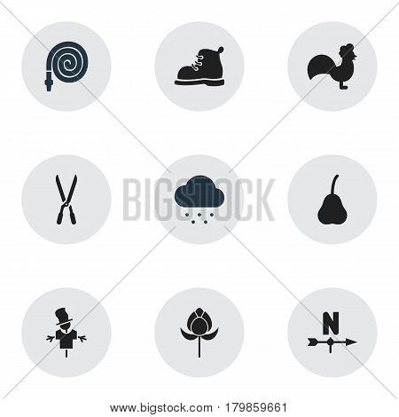 Set Of 9 Editable Garden Icons. Includes Symbols Such As Tulip, Bugaboo, Garden Scissors And More. Can Be Used For Web, Mobile, UI And Infographic Design.