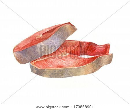 Watercolor red sliced fish. Chum sketch isolated