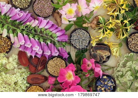 Medicinal herb and flower selection used in natural alternative herbal medicine on hemp paper background.
