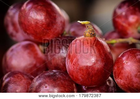 close up single Red grapes on many grapes background