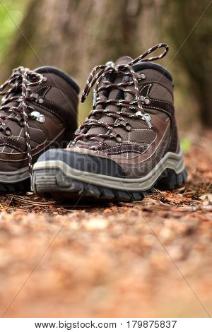 Brown Hiking Boots In A Forest