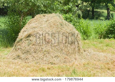 Small haystack on a summer meadow .