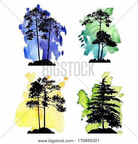 vector set of black conifer trees silhouettes at color watercolor backgrounds, hand drawn isolated natural elements