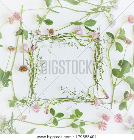Square frame with fresh wildflowers and grass. Minimal flat design. Place for a replica. Decree announcement indication comment tag. The top view.