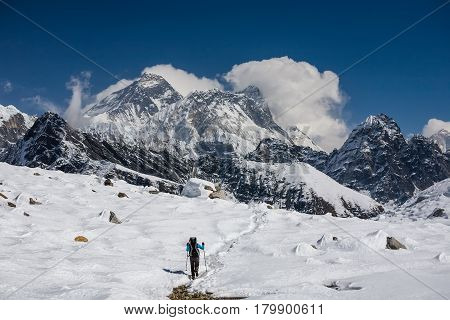 Trekker Is Walking By Renjo La Pass In Everest Region