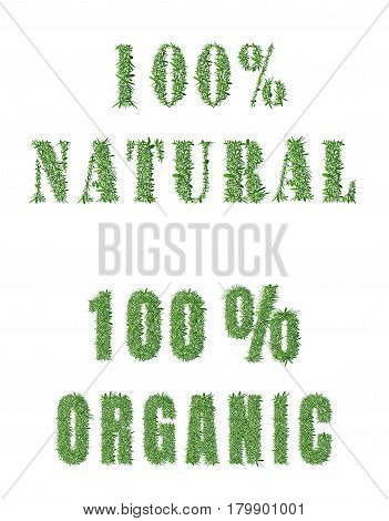 Ecology nature design.The word 100 organic 100 natural is made of grass. Environmental concept for advertisement healthy food, ecological products, lifestyle, etc. Vector illustration. Horizontal.