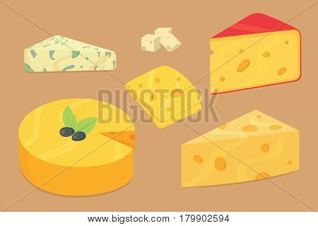 Cheese types. Modern flat style realistic vector illustration icons. Isolated vector parmesan or cheddar fresh on background.