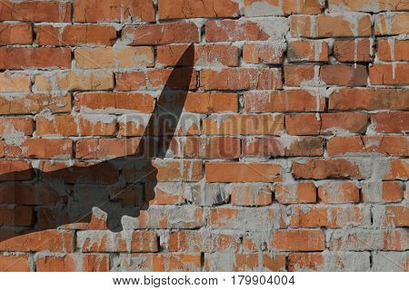Human hand with killing knife silhouette in shadow on red brick with concrete background with space for text or image.