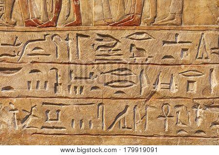 Egiptian hieroglyphs carved in sandstone