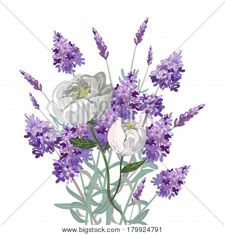 Lavender and peony bouquet vector illustration stock